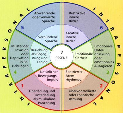 """Biosynthese """"Integration des Lebens"""" Schaubild"""